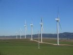 wind-turbines-field.jpg